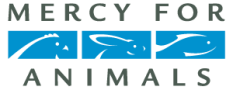 mercy-for-animals-logo-color